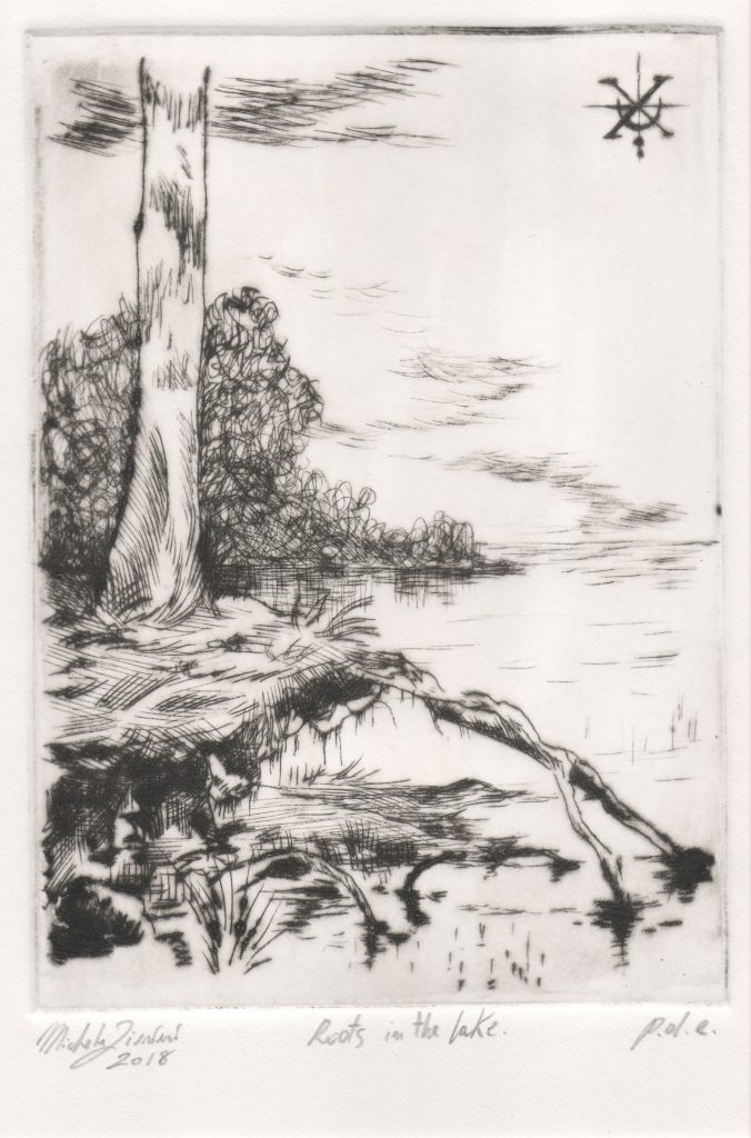 Roots in the Lake - Drypoint Engraving - 2018 - 12,5x18cm